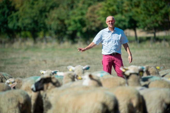 La Montage – Cinq idées reçues sur le bien-être animal, thème phare du Sommet de l'élevage.