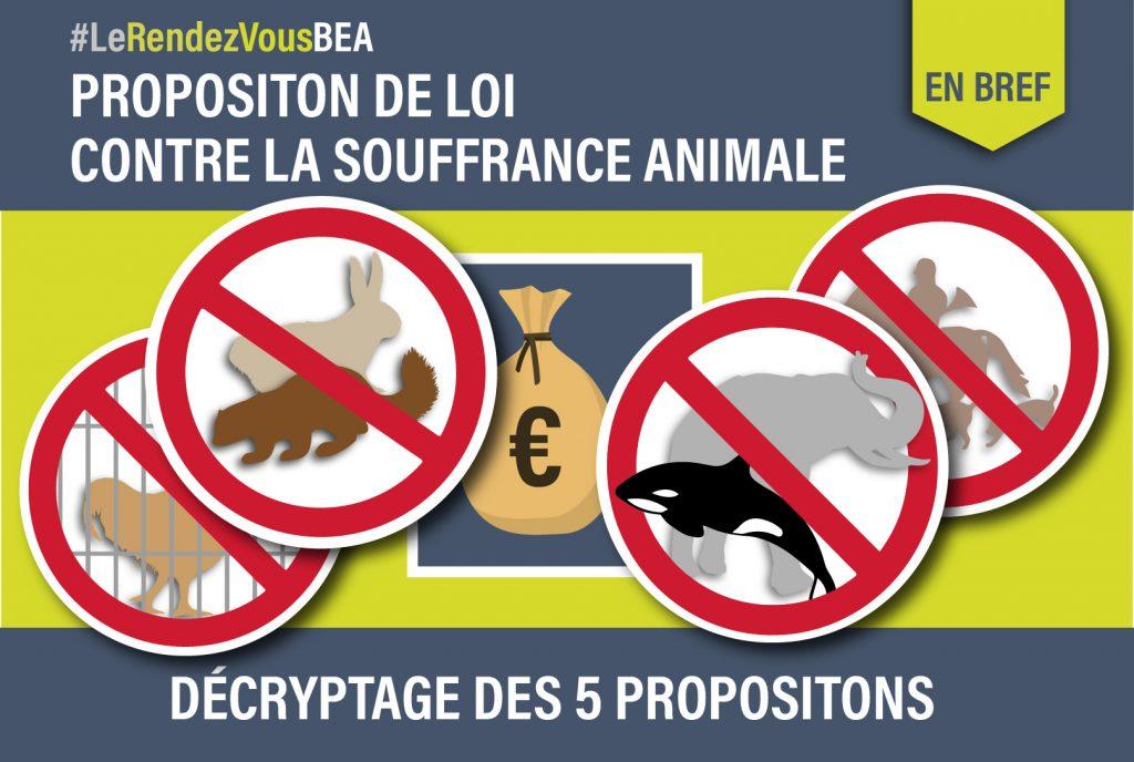 Decryptage Proposition de Loi Villani