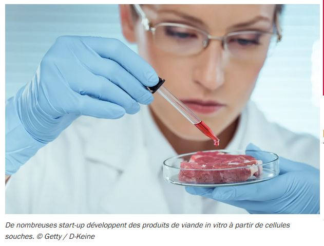 France Inter – Derrière L214, l'ombre de la viande in vitro