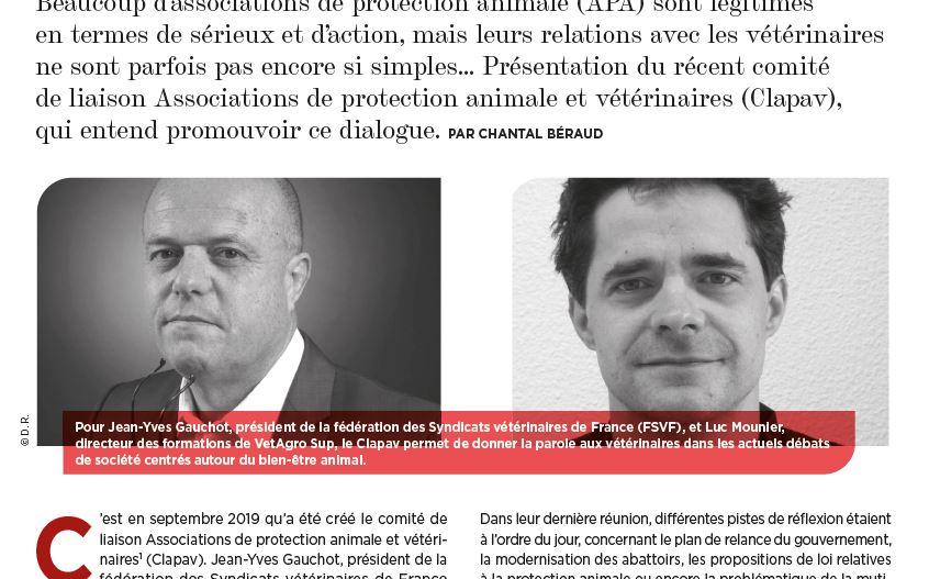 La semaine vétérinaire – Bien-être animal – Le CLAPAV, un lien entre vétérinaires et APA
